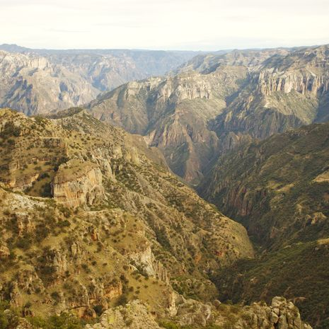 Copper Canyon Extension to Highlights of Mexico