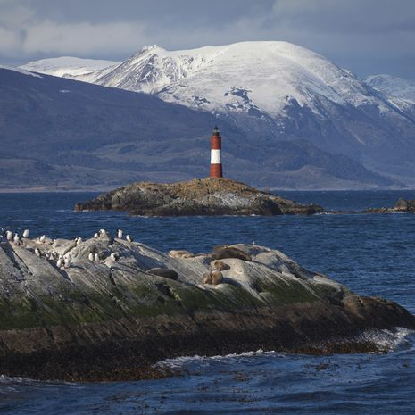 Tierra del Fuego Extension to Splendours of Chile