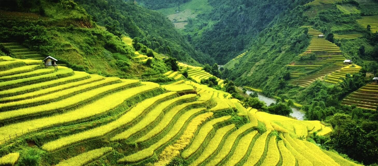 Vietnam in Style - Private Journey