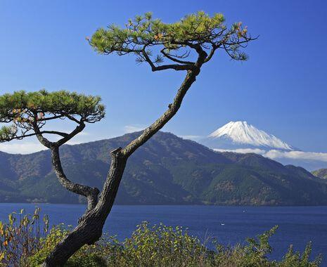 Hakone National Park, Japan