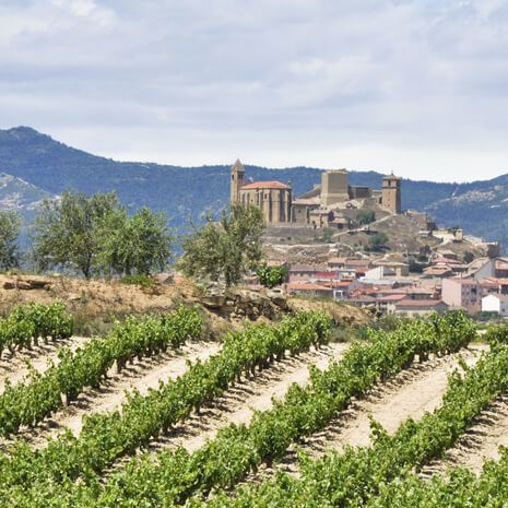 The Vineyards of La Rioja - (Superior) Self Drive Private Travel