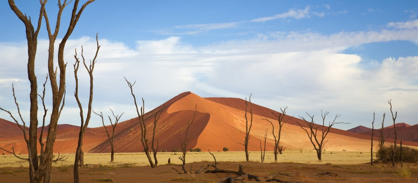 Highlights of Namibia - Private Travel