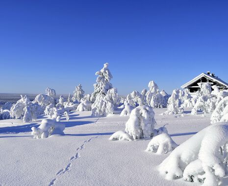 Saariselkä, Finland