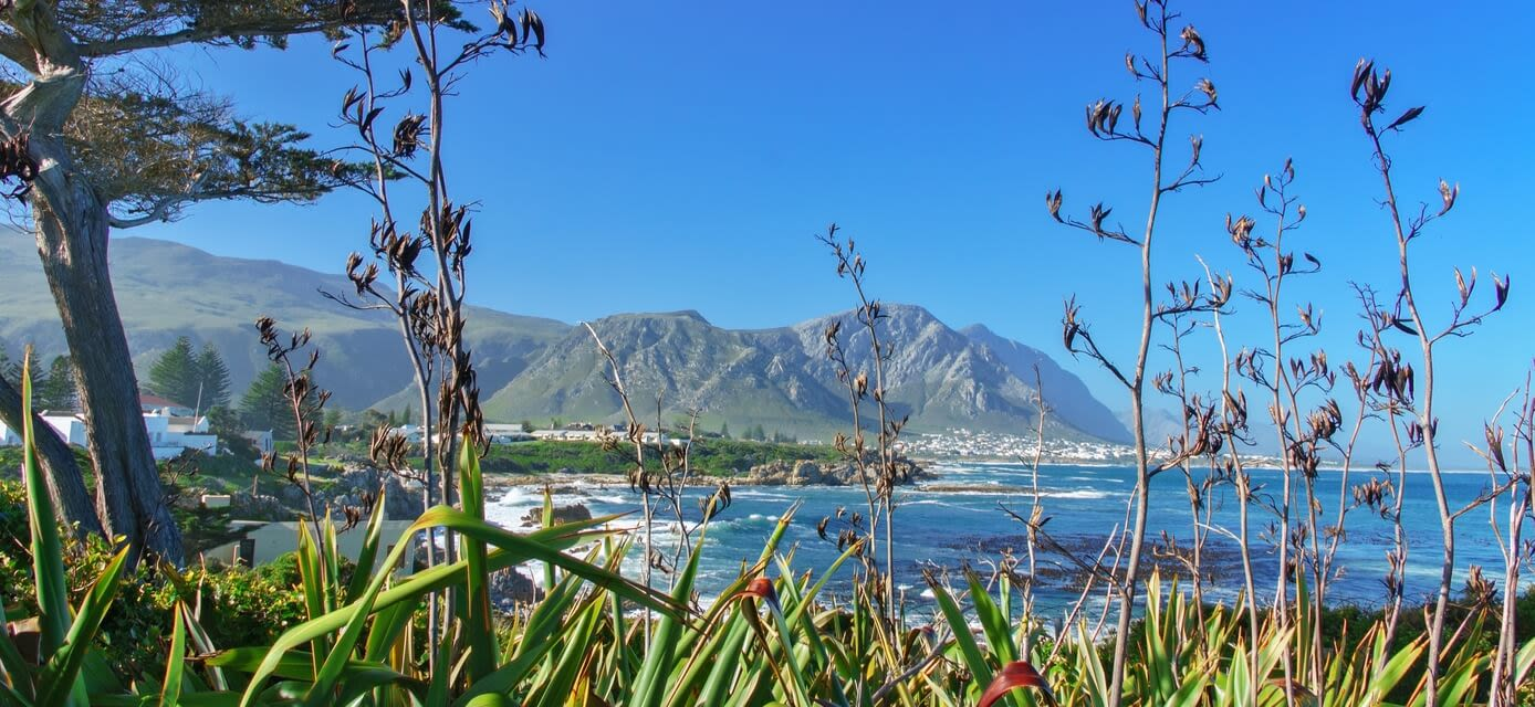 Splendours of South Africa