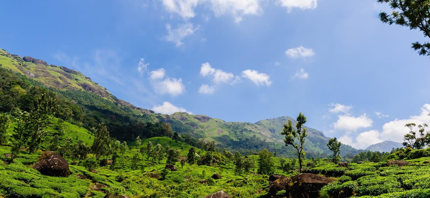 Hidden Sri Lanka private travel
