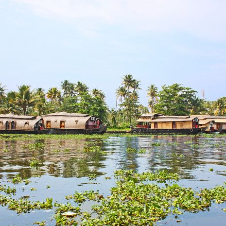 Houseboats in the backwaters of Kochi, Kerala