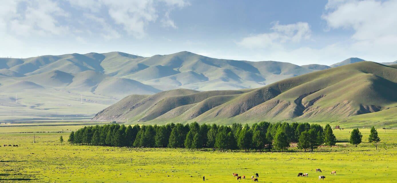 Trans-mongolian railway route