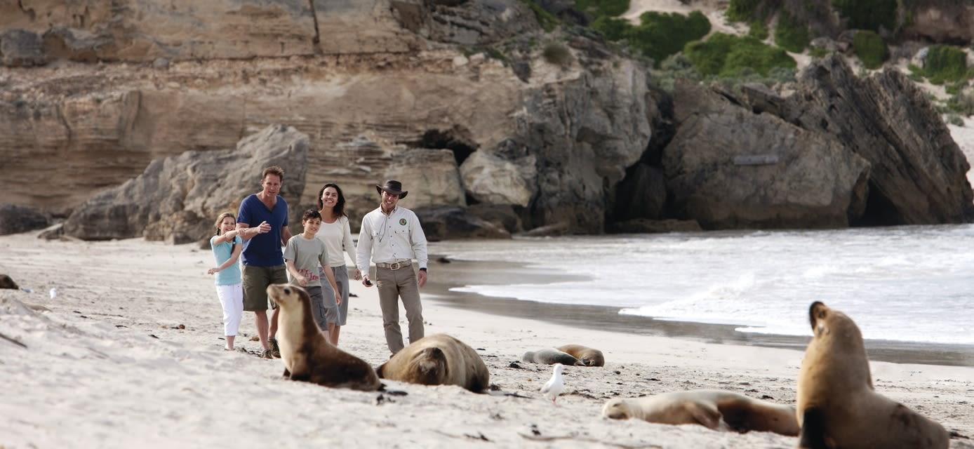 Seal Bay, Kangaroo Island,  Credit Tourism Australia