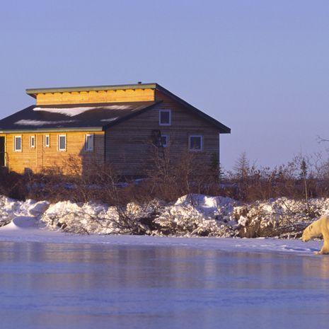 Dymond Lake Ecolodge - Courtesy of Churchill Wild, photo by Dennis Fast