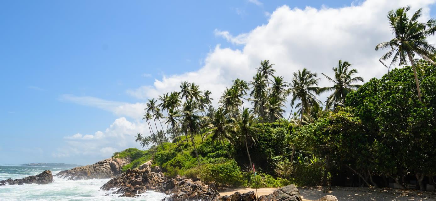 Coastline, Mirissa, Sri Lanka