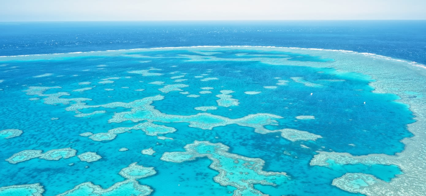 Great Barrier Reef in Whitsundays, Queensland, Australia