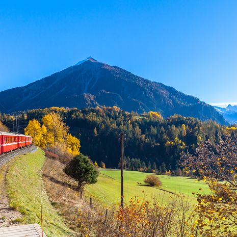 Ultimate Swiss Rail Adventure