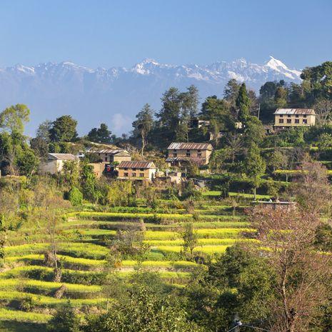 Nepal Panorama