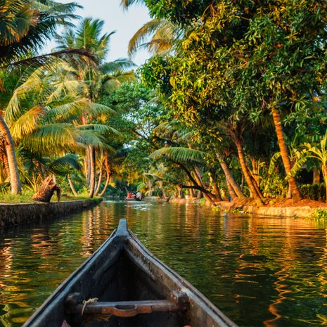 Splendours of Kerala - Solo Tour