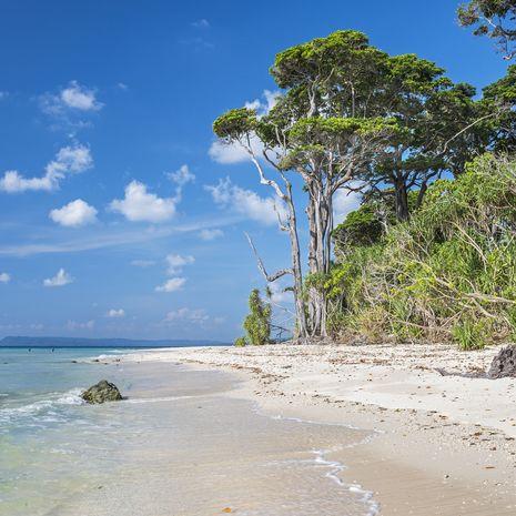 Laxmanpur beach, Neil Island, Andaman Islands