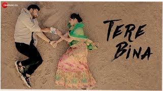Tere Bina – Bismil Video Song HD Download