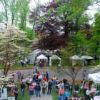 Greenfield Hill Church In Fairfield Stages Dogwood Festival, Fundraiser