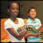 New Rochelle Library Features Activities For School Break Week