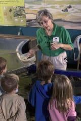 Maritime Aquarium Seeks New Volunteers