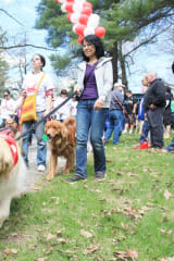 Calling All Dogs To SPCA's Annual Walkathon