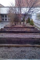 Mount Vernon High School Seeks Support For $20,000 Grant For Garden