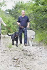 Fairfield County Conservationists Explain How To Enjoy Outdoors With Dogs
