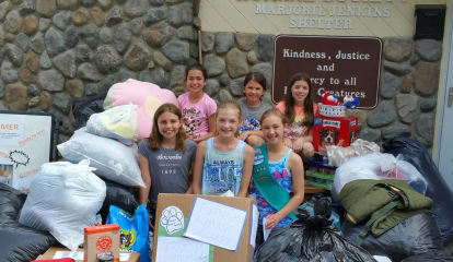 Somers Girl Scouts Donate A Ton Of Goods To Putnam Humane Society