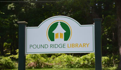 Gardeners Can Learn About Japanese Knotweed In Pound Ridge Discussion