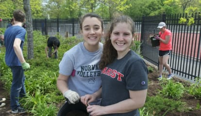 Norwalk High Students, Teachers Get Their Hands Dirty For Campus Cleanup