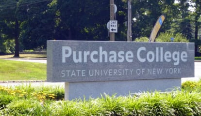SUNY Purchase Offers Training At Annual Appraisal Camp