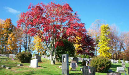 Town Of Ossining Seeks Laborer For Cemetery Job