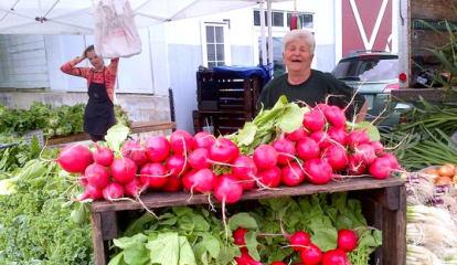 Bronxville Farmers' Market Returns