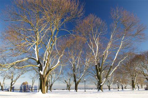 Fresh Coating Blankets Beach As Snowfall Totals Grow In Westport
