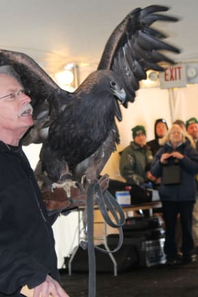 Annual EagleFest Bringing Thousands To Croton Point Park