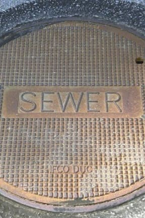 State DEC Reports Sewage Discharge In Rye