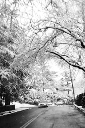 Armonk Wakes Up To Snow Covered Friday