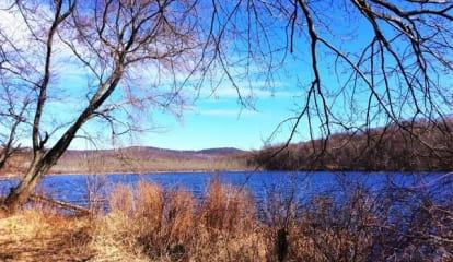 177 Lake Shore Drive, Mahopac, NY 10541