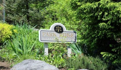 503 Park Ridge Lane, White Plains, NY 10603