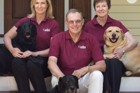 Tragedy Inspires Wilton Family To Start Company To Protect Dogs From Cars