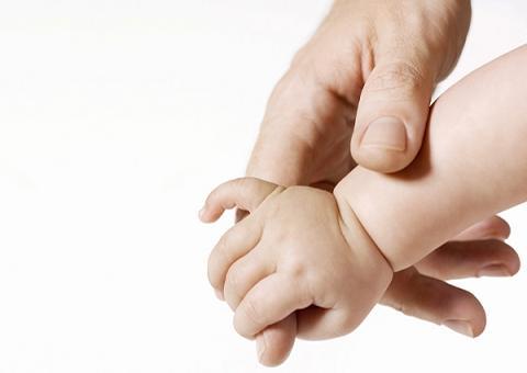 Иск на отцовство образец