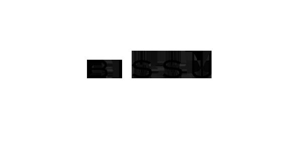 bissu