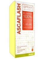 Image of Ascaflash Spray Anti-Acariens 500Ml - Zambon France
