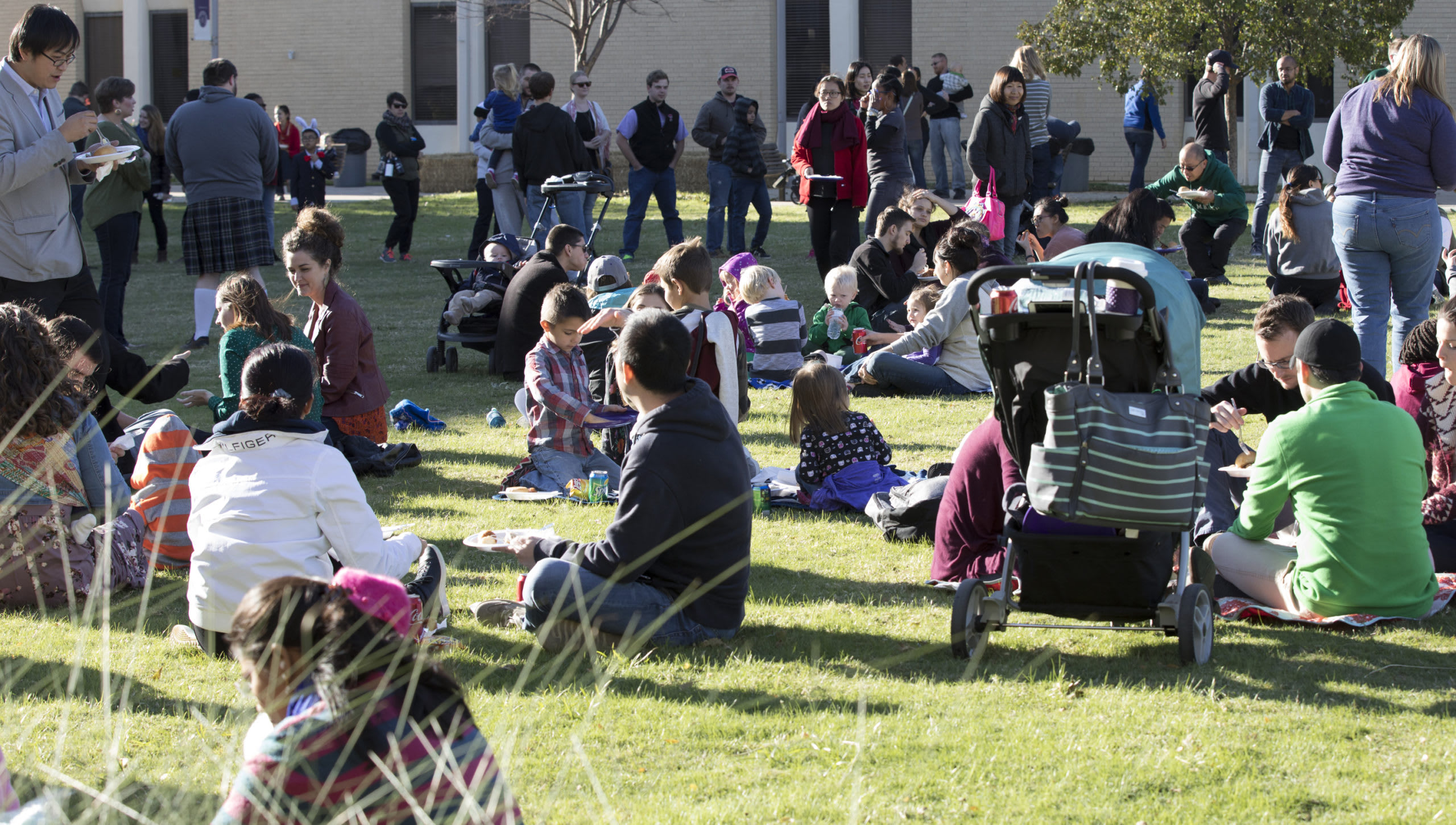 students outside on the campus lawn