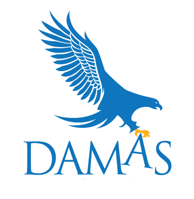 Damas Union