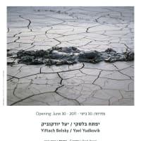 Wild | פרא - Art Exhibition in Dan Gallery
