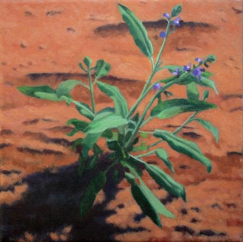Purple flower by Alex Tubis [2012]