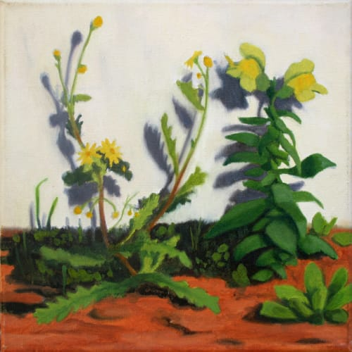 Yellow flowers by Alex Tubis [2012]