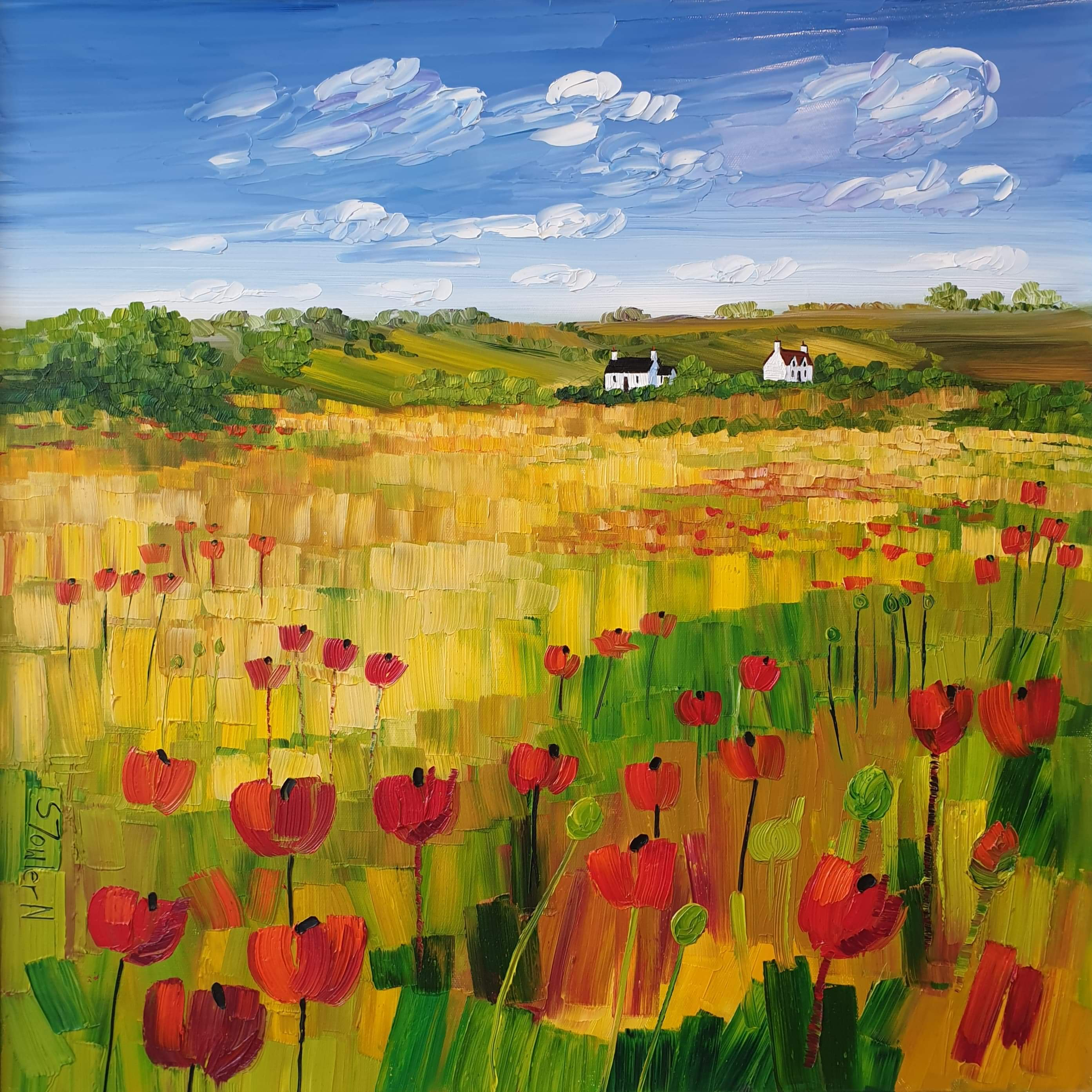 Cottages and Poppies
