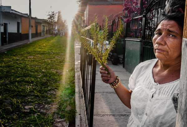 A woman holds a spring of rosemary before the Palm Sunday procession passes during Easter week in Ajijic.