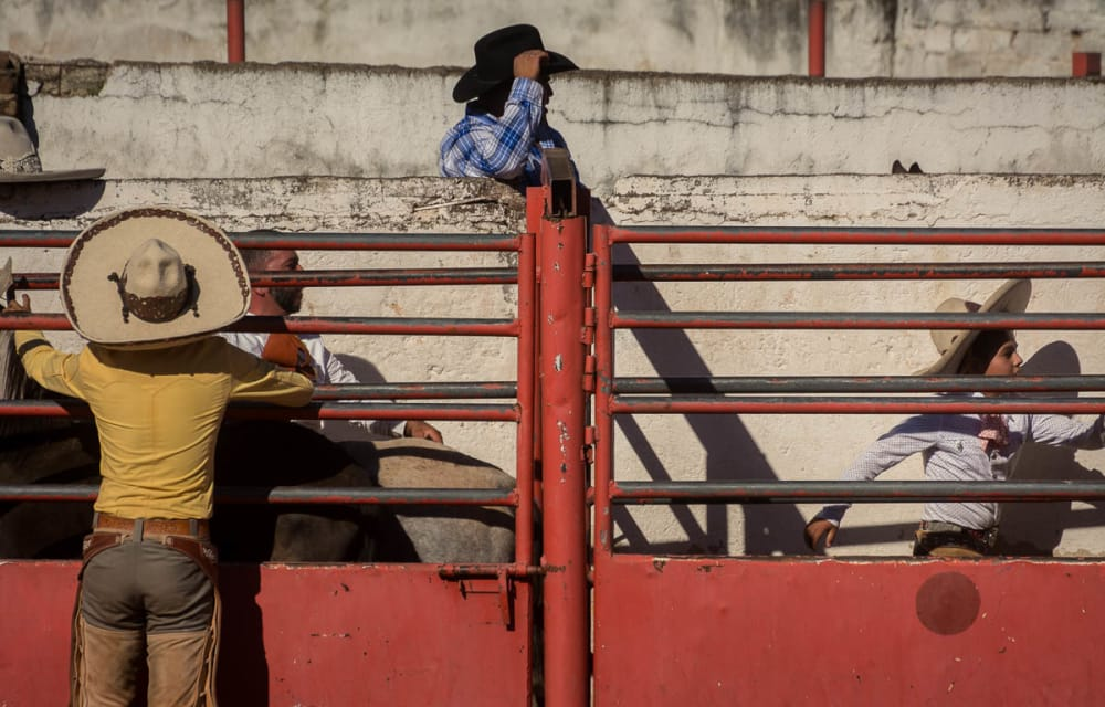 Cowboys preparing a bull for riding on the Day of the Cowboy in Ajijic, Mexico.